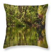 Silver Springs Nature Park Florida Throw Pillow by Christine Till