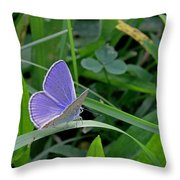 Silver Studded Blue Butterfly Throw Pillow