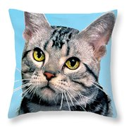 Silver Tabby Kitten Original Painting For Sale Throw Pillow