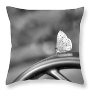 Silver White Butterfly Throw Pillow