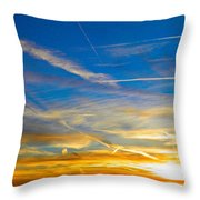 Silver Wing Sunset Throw Pillow