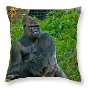 Silverback Gorilla  Throw Pillow