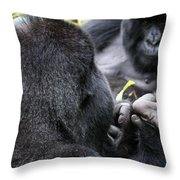 Silverback Grooming 1 Throw Pillow