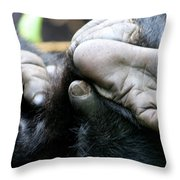 Silverback Grooming 2 Throw Pillow