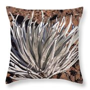 Silversword Leaves Throw Pillow