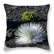 Silversword Plant Throw Pillow