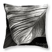 Silvertone Leaf Throw Pillow