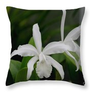 Simple And Pure Throw Pillow
