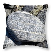 Beautifully Patterned Rock On The Beach In Alaska Throw Pillow