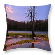 Simple Beauty Of Yellowstone Throw Pillow