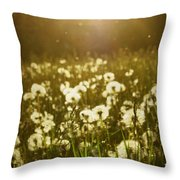 Simple Dreams Throw Pillow