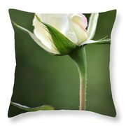Simple Grace Throw Pillow