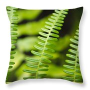 Simple Green Throw Pillow by Adam Romanowicz