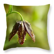 Simple Miracles Throw Pillow