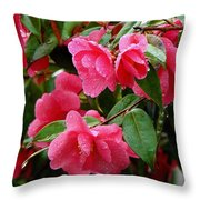 Simple Pleasure Throw Pillow