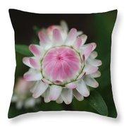 Simple White Straw Flower Throw Pillow