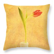 Simplicity -  No Words Throw Pillow