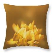 Simplistic Yellow Clover Flower  Throw Pillow