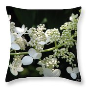 Simply Throw Pillow