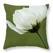 Simply Beautiful Throw Pillow