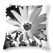 Simply Black And White Throw Pillow