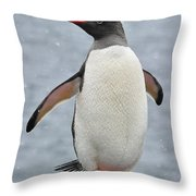 Simply Gentoo Throw Pillow
