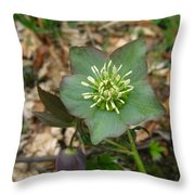 Simply Green Throw Pillow