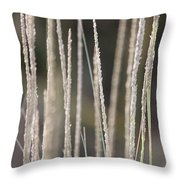Simply Pure Throw Pillow