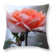 Simply Rose  Throw Pillow