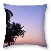 Simply Sunset Throw Pillow