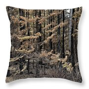 Singed Throw Pillow