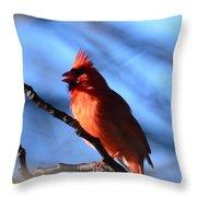 Singing Cardinal Throw Pillow