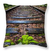 Singing In The Rain Throw Pillow by Debra and Dave Vanderlaan