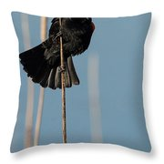 Blackbird Melody Throw Pillow
