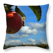 Single Apple Throw Pillow