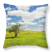 Single Apple Tree In Maine Blueberry Field Throw Pillow