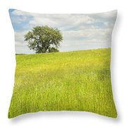 Single Apple Tree In Maine Hay Field Throw Pillow