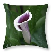 Single Calla Throw Pillow