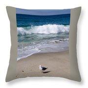 Single Seagull On The Beach Throw Pillow