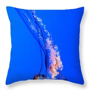 Single Jellyfish Throw Pillow