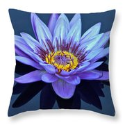 Single Lavender Water Lily Throw Pillow