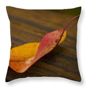 Single Leaf Throw Pillow
