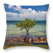 Single Mangrove Tree In The Gulf Throw Pillow