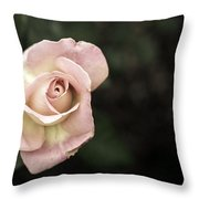 Single Muted Rose Throw Pillow