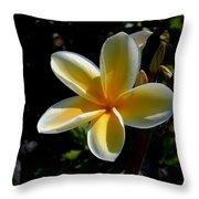 Single Plumeria Throw Pillow