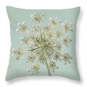 Single Queen Anne's Lace Throw Pillow