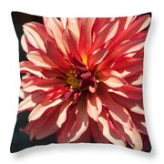 Single Red Bloom Throw Pillow