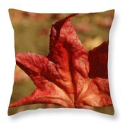 Single Red Maple Leaf Throw Pillow