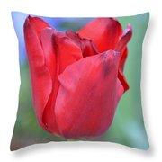 Single Red Tulip Throw Pillow