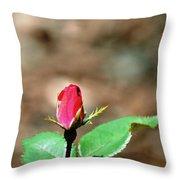 Single Rosebud Abstract Throw Pillow